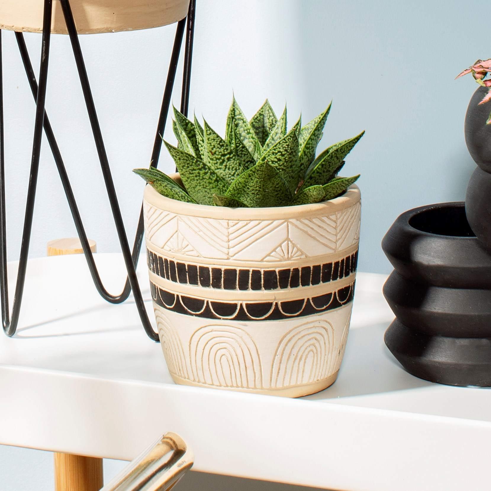 sass & belle Cementový obal na květináč Black & White Sgraffito, béžová barva, černá barva, beton