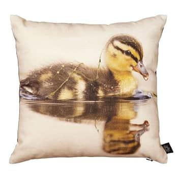 Polštářek Duck 30x30