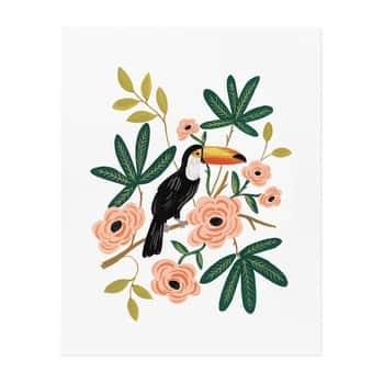 Obrázek Toucan 20,5x25,5cm