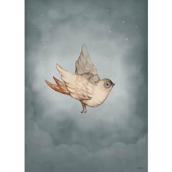 Plagát Dear Sparrow 50 x 70 cm