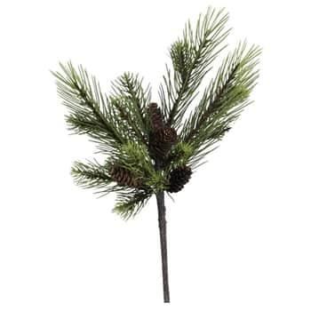 Větvička zborovice Pine