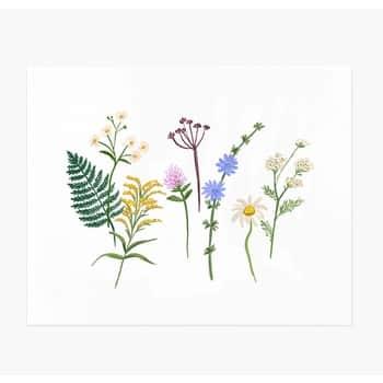 Umělecký tisk Wildflowers 20,4x25,5cm
