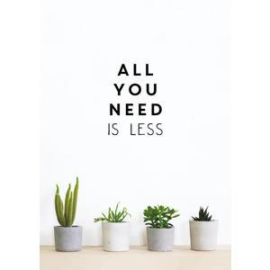 Kniha - All You Need is Less, Vicki Vrint