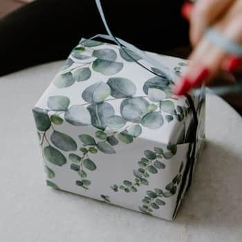 Balicí papír Eukalyptus A1 - 3 archy