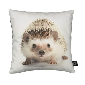 Polštářek Hedgehog 30x30
